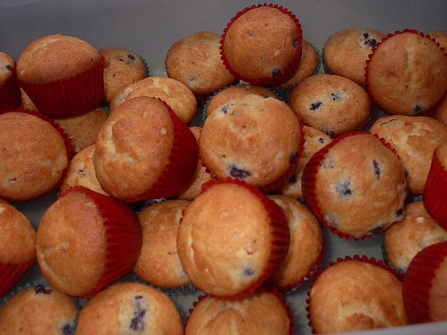 thecookieblogger.com » Blog Archive » mini blueberry muffins